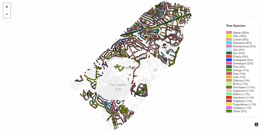 Brookline Map Tree Species